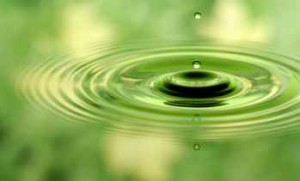 Clear-green-water-drop-710x429