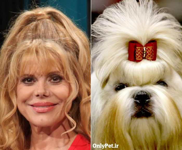 celebrity-look-alikes-animals-10_onlypet-ir