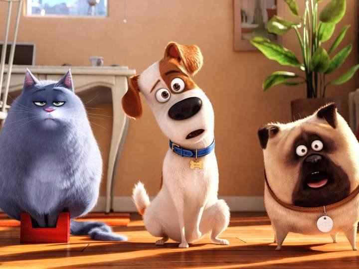 انیمیشن زندگی اسرار آمیز حیوانات خانگی میتواند رکوردشکن باشد