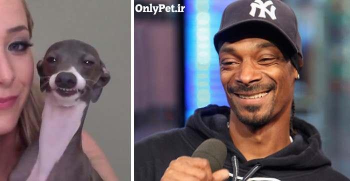اسنوپ داگ و شباهتش به یک سگ