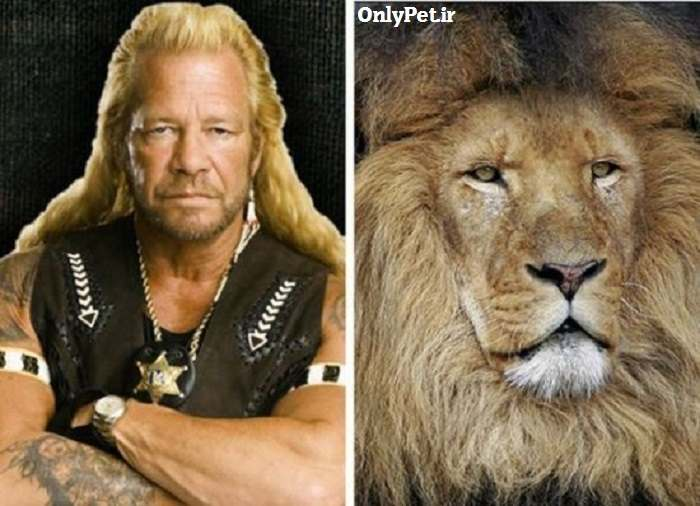 celebrity-look-alikes-animals-6_onlypet-ir