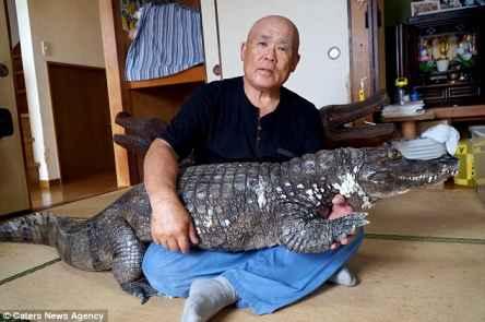 زندگی بی خطر یک مرد ژاپنی با حیوان خطرناک!