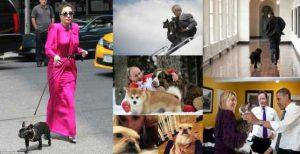 حیوانات خانگی سیاستمداران و افراد مشهور + تصاویر (بخش اول)