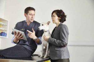 قلاده هوشمند برای حیوانات خانگی