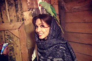 عکس: ابراز علاقه طوطی ها به شهرزاد کمالزاده