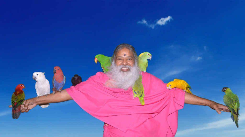 لقب سلطان پرندگان برای یک پیرمرد هندی!