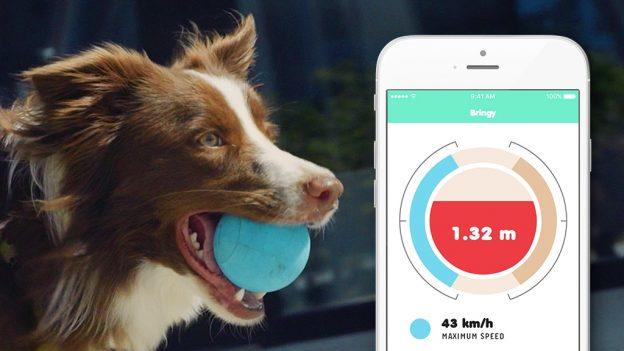 توپ هوشمند برای سگ ها