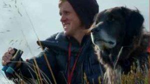 این سگ شگفت انگیز به محافظت از طوطی های در حال انقراض کمک میکند!