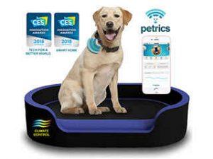 تخت هوشمند حیوانات خانگی
