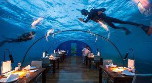 رستوران آکواریوم ایتا در مالدیو + تصاویر
